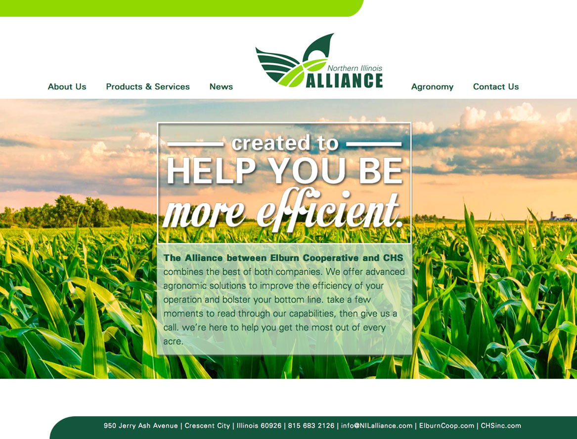 So, You're Ready For A Website Update...a Design & Conquer Blog Post from Martinez Creative Group, advertising and marketing agency in Chicago Illinois Suburbs -- it all starts with a sketch and your goals! Northern Illinois Alliance website design green, fields, lime
